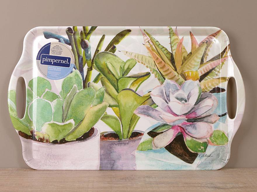 Tablett-Succulents-1
